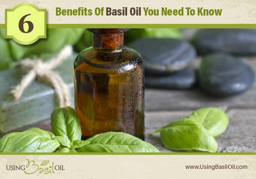 basil oil treatment